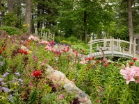 The Bibler Gardens